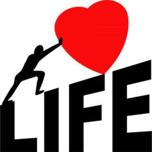27541140 - love life